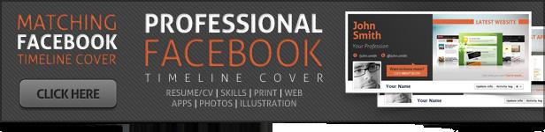 Professional Resume/CV - 1